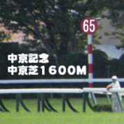 2017年 第65回 中京記念(GIII)