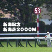2017年 第53回 新潟記念(GIII)