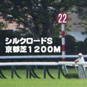 2017年 第22回 シルクロードステークス(GIII)