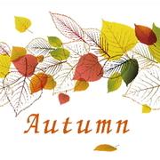 秋のインテリアと暮らし