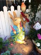 ピーターラビット-Peter Rabbit-
