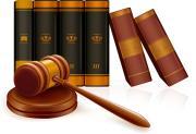 本人訴訟で戦う(法廷闘争)