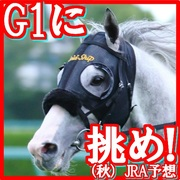 G1に挑め!(秋)JRA予想