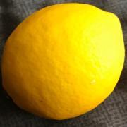 レモン大好き!