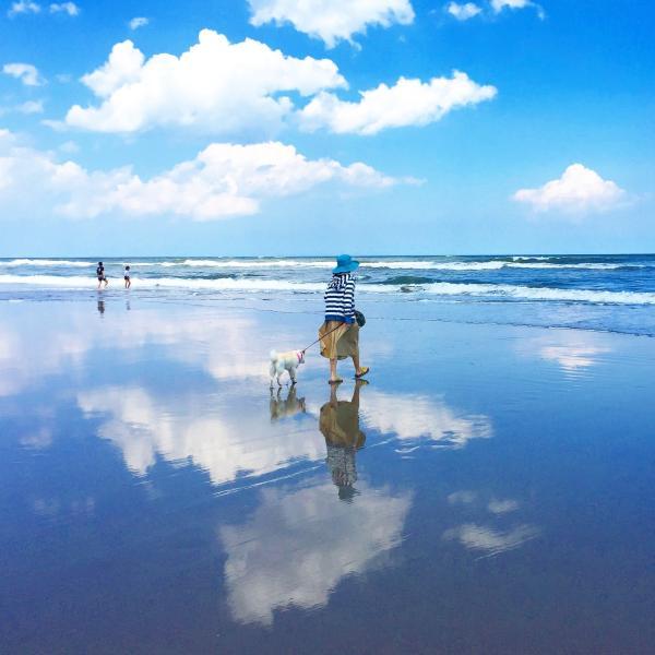 海を楽しむ