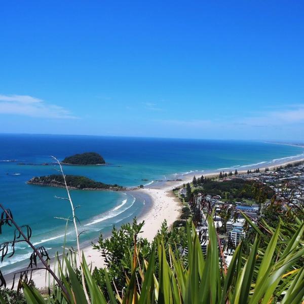 ニュージーランドを楽しもう!!