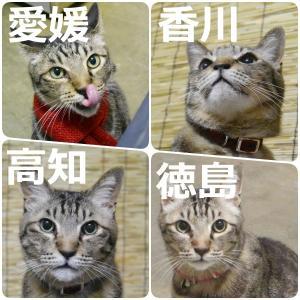 四国のブロガー大集合~♬
