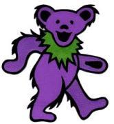 Greatful dead bear