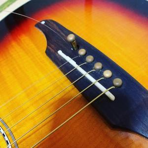 エレキギター&フォークギター
