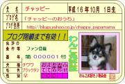 わんこ(犬)マイナー図鑑・肉球・尻尾