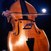 コントラバス(楽器)