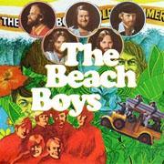ビーチ・ボーイズ - The Beach Boys