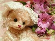 お花を贈ろう*フラワーギフト